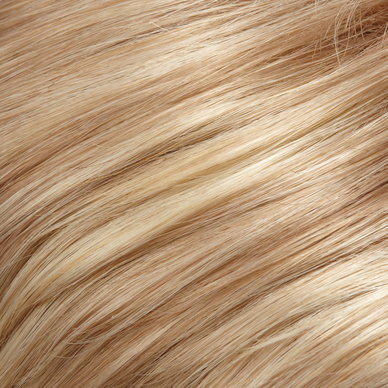 24B22 - Light Golden Blonde & Light Ash Blonde Blend
