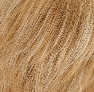 27-H613 - Strawberry Blonde with Pale Blonde Highlights