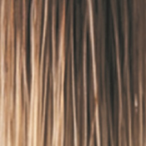 ICED MOCHA-R - Medium Brown with Gold Blonde Highlights and Shaded Roots Dark Brown