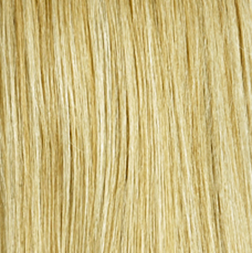 BUTTERSCOTCH - Golden Blonde and Light Pale Blonde Blend