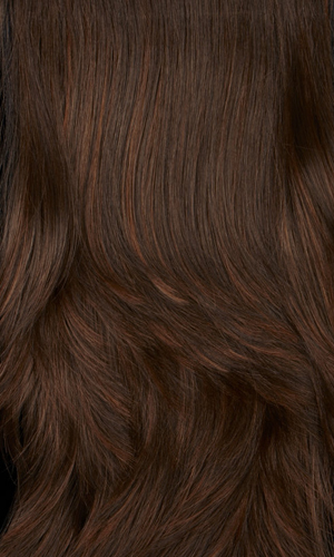 6H - Chestnut Brown with Auburn Highlights
