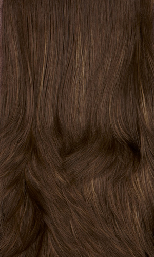 8H - Medium brown with golden brown highlights